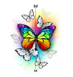 composition with rainbow butterfly vector image