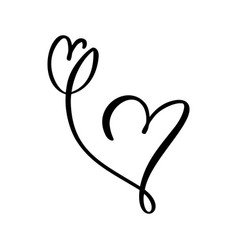 hand drawn two heart and tulip flower love sign vector image