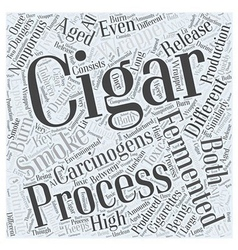 The Dangers of Being Exposed to Cigar Smoke Word vector image
