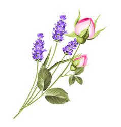 Wedding flowers bouquet vector