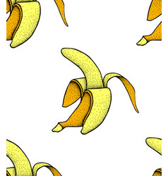 fruit menu banana hand-drawn vector image