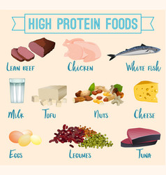 High protein foods set vector