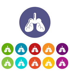 lungs icons set color vector image