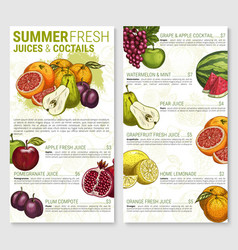 menu sketch for tropical exotic fruit vector image