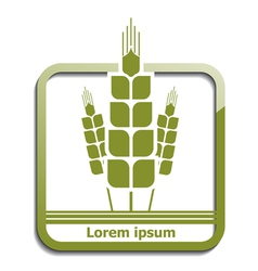 Agricultural wheat icon vector image