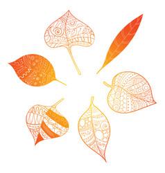 Autumn leaves stylized orange leaves lying vector