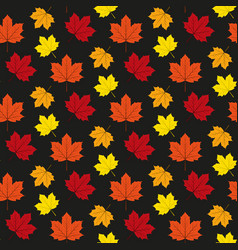 autumn maple leafs pattern vector image