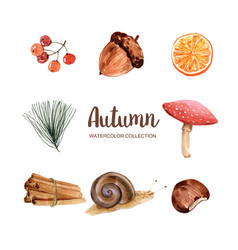 Beautiful autumn design with watercolor for vector