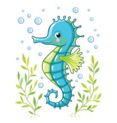 Cute cartoon Sea horse isolated vector