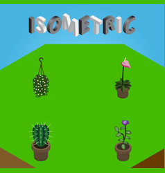 Isometric houseplant set of grower blossom vector