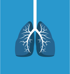 lungs image banner isolated on blue background vector image