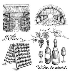 Set of wine bottles and barrels in winery or vector