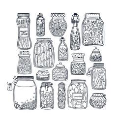 Set pickled jars with vegetables fruits herbs vector