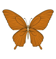 vintage butterfly isolated on white background vector image