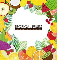 Fruits design vector image vector image