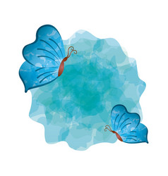 Blue butterflies icon vector