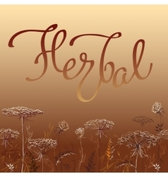 Calligraphy sign herbal 1 vector image