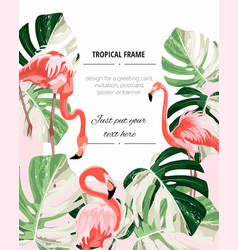 paradise pink flamingo birds with exotic leaves vector image