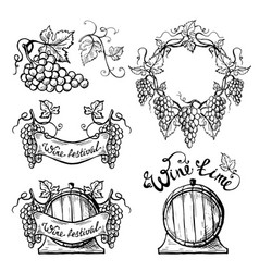 set wine emblems vector image