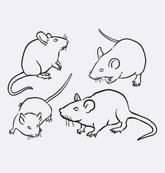 mouce mice mammal animal sketches vector image vector image