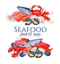 banners seafood vector image
