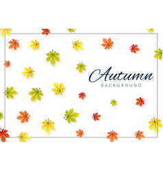 autumn background with colorful leaves greeting vector image