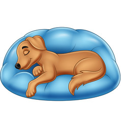 cute dog cartoon sleeping on a pillow vector image