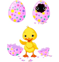 Easter duckling vector