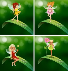 Fairies standing on green leaves vector