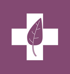 Icon medical cross with leaf vector