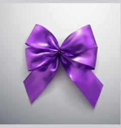 Purple bow and ribbons vector