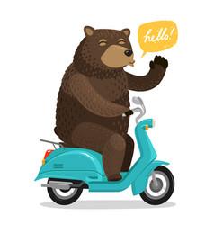 Funny bear riding a scooter circus concept vector