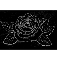 white rose outline gray spots black background vector image vector image