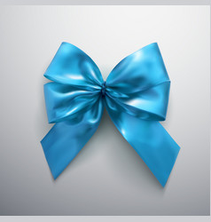 blue bow and ribbons vector image