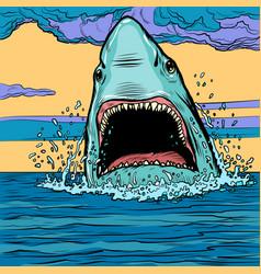 dangerous aggressive shark in ocean vector image