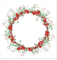 Round frame with red berries on white vector image