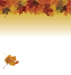 maple fall on gradient background vector image