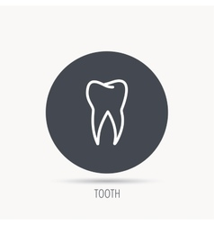 Tooth icon Dental stomatology sign vector image