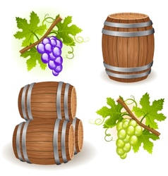 wooden barrels and grape vector image vector image