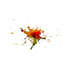 Abstract colorful splash watercolor blot vector