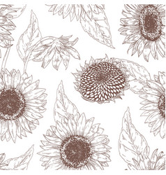 Monochrome floral seamless pattern with sunflower vector