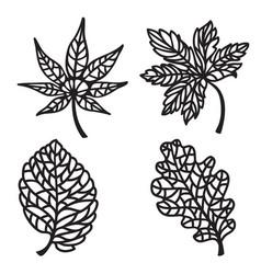 Sceleton leaves set vector