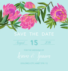 wedding invitation template with protea flowers vector image