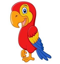 Cute macaw bird cartoon posing vector image