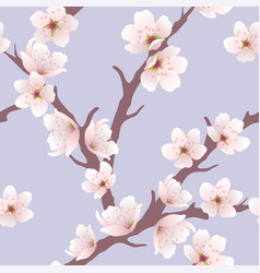 seamless floral background with cherry blossom vector image vector image