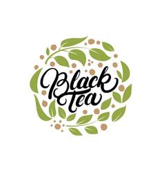 black tea hand written lettering logo label badge vector image