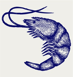 Boiled shrimp vector image vector image