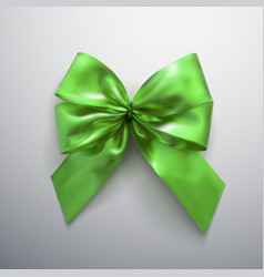green bow and ribbons vector image vector image