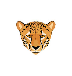 a cheetah head vector image