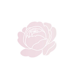 blush pink rose logo design simple and styled vector image